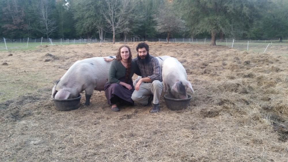 pork farmers