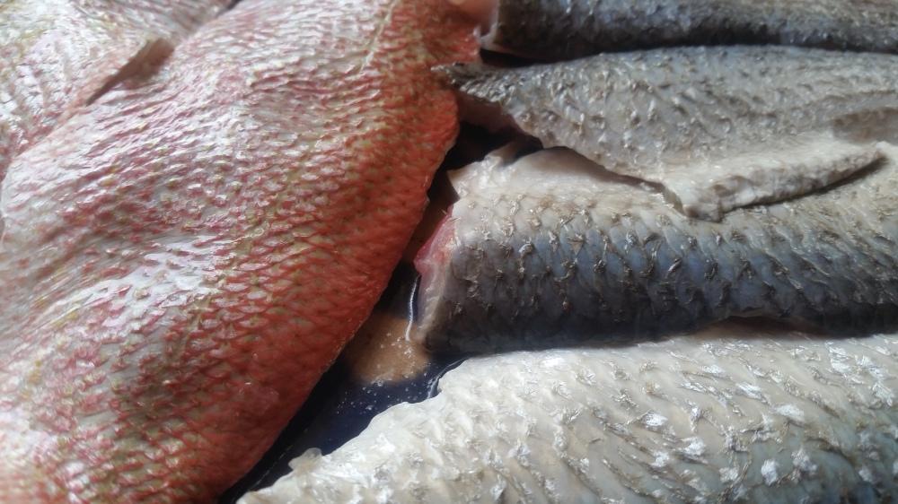 Soupe Au Poisson Fish Soup