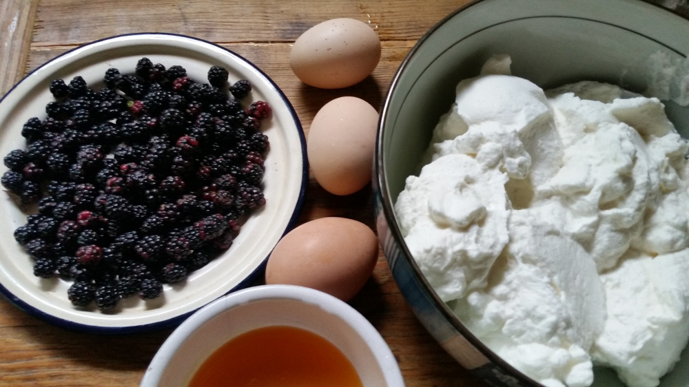 Frozen Vanilla Cream With Wild Blackberry Jam