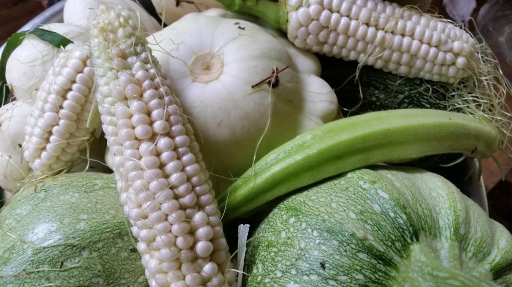 summer veggies