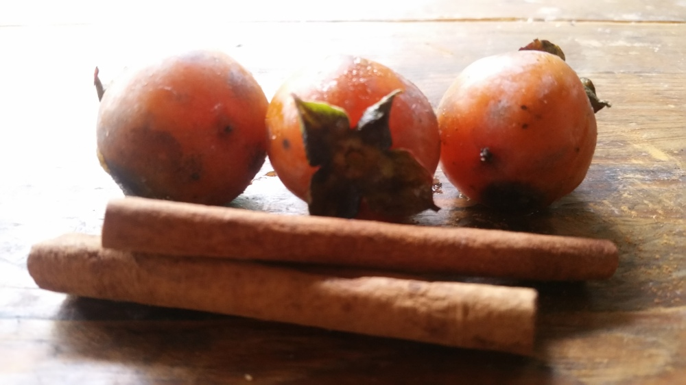 Wild Persimmon Tarts