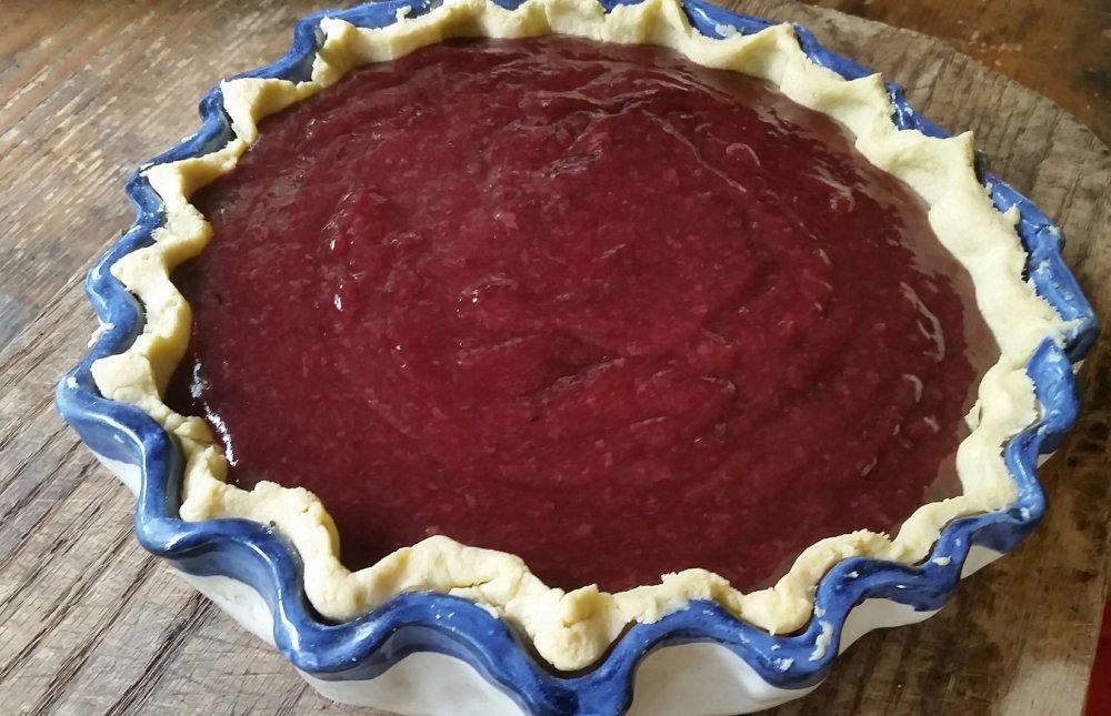 Wild grape pie