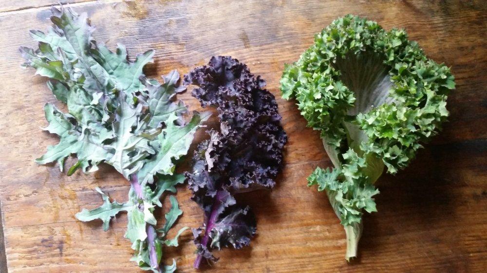 Kale salad 2