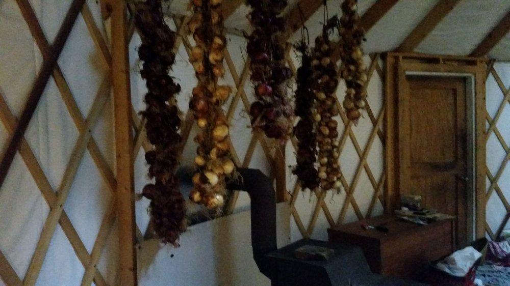 Onion braids