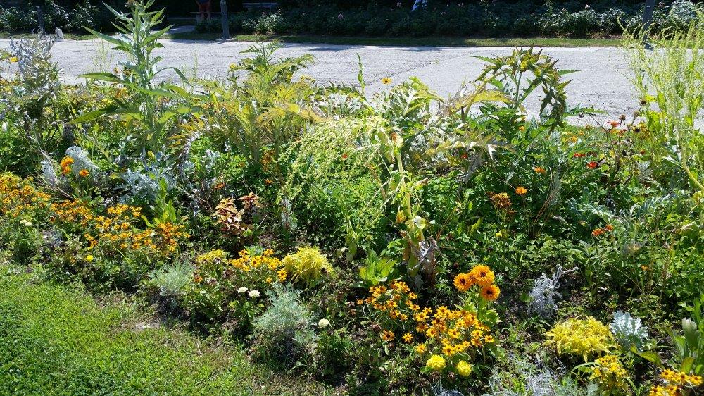 Monastary Garden 6