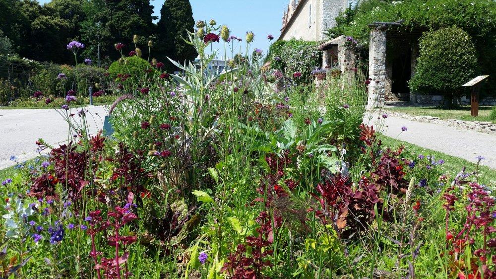 Monastary Garden 7