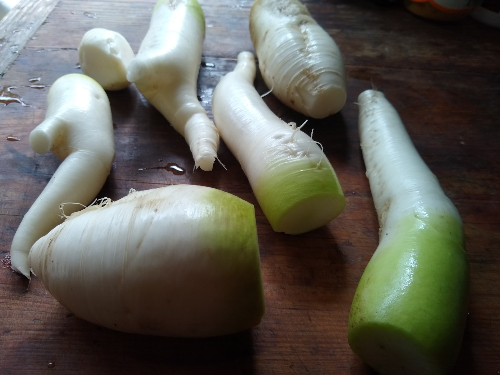 Tangy Radish Salad 1