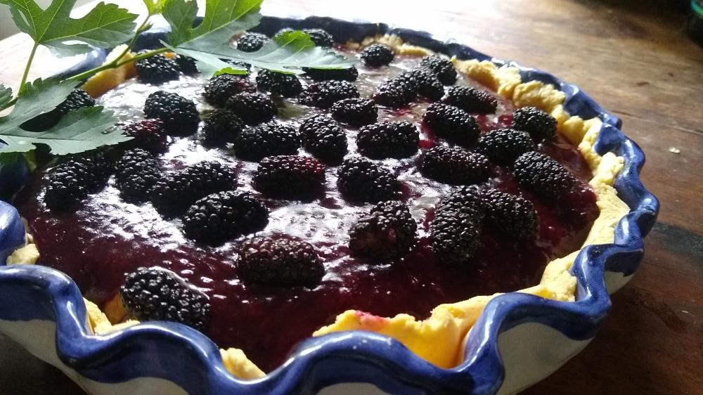 Mulberry custard pie 8