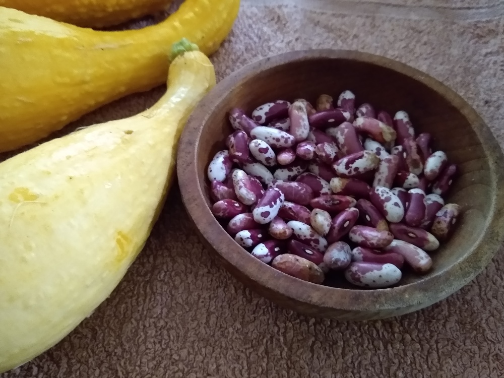 squash and dry beans